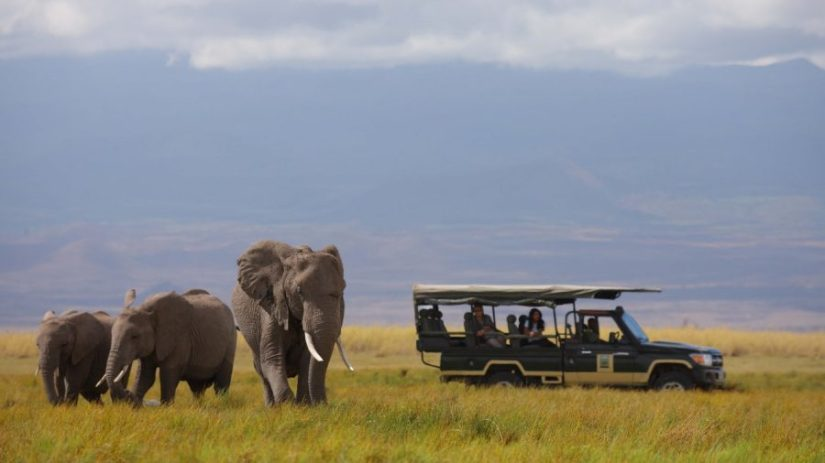 Luxury Safari in Amboseli National Park