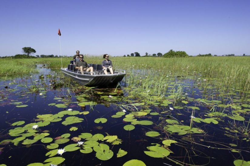 Luxury safari in the Okavango Delta