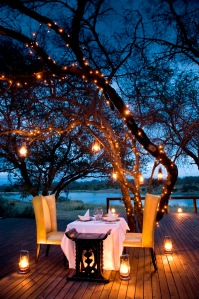 Romantic dinner on a safari honeymon