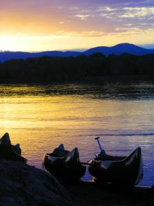 Boat Safari on the Zambezi