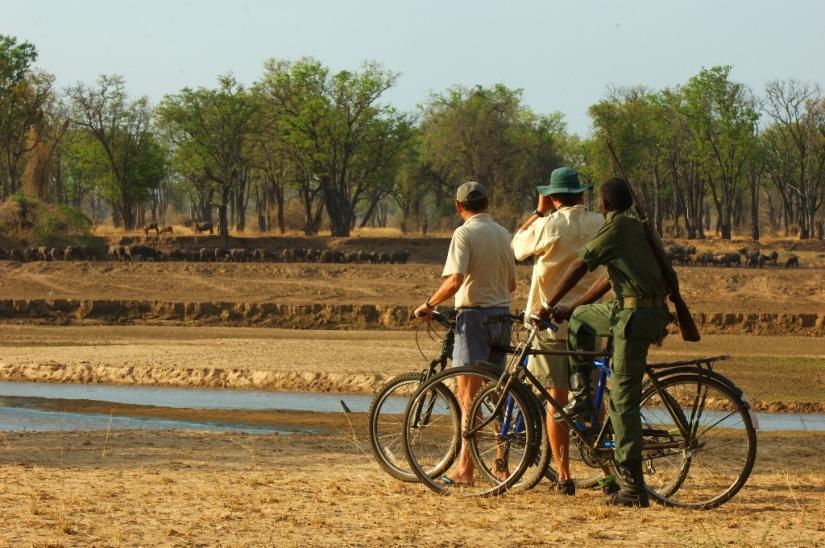 Mountain Bike Safari from Tafika, Zambia