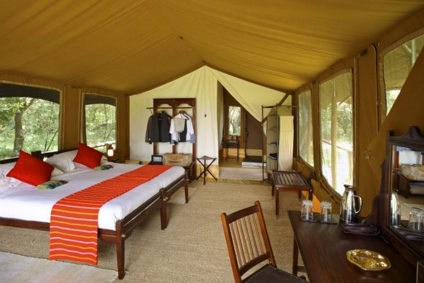 Elephant Pepper Camp Masai Mara