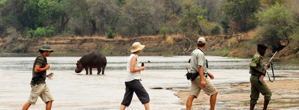 Zambia Walking Safari in North Luangwa National Park