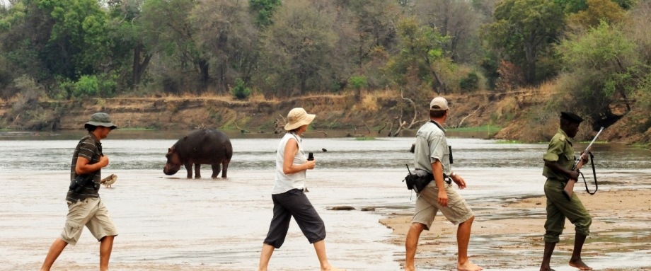 Zambia Walking Safari in North Luangwa National Park
