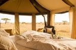Namiri Plains Safari
