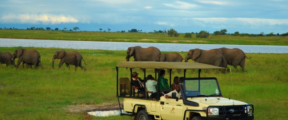 Luxury Safari in Chobe National Park, Botswana