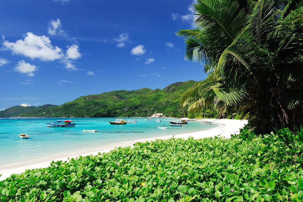 Luxury Beach Holidays in the Seychelles