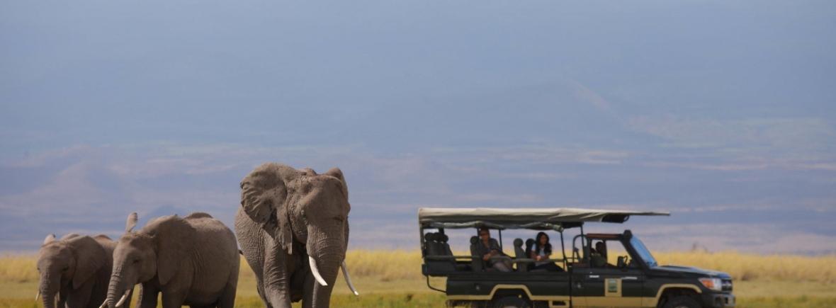 Luxury Safari in Amboseli