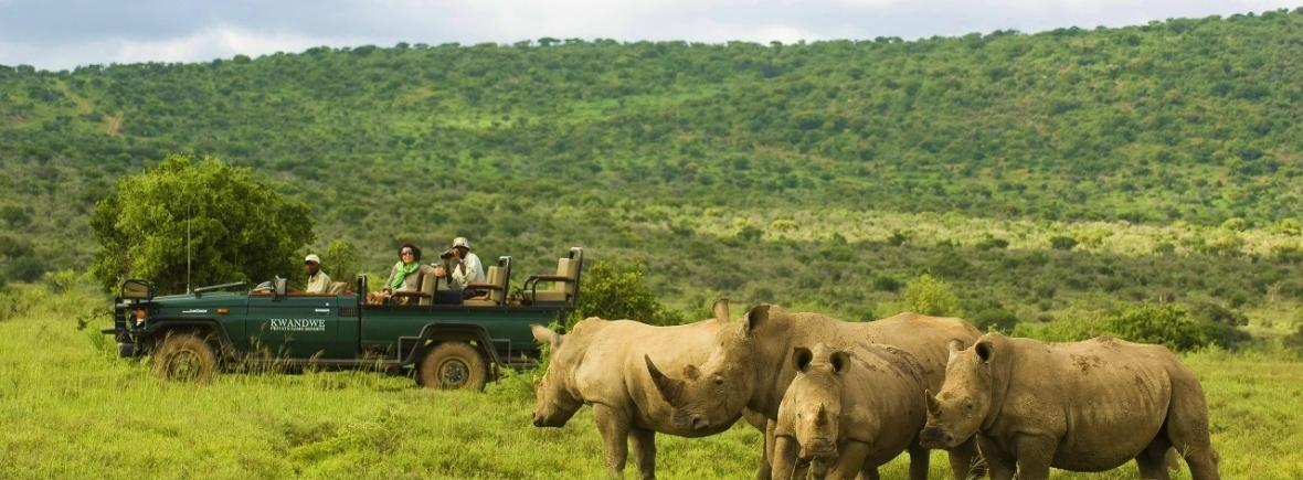Safari in the Eastern Cape