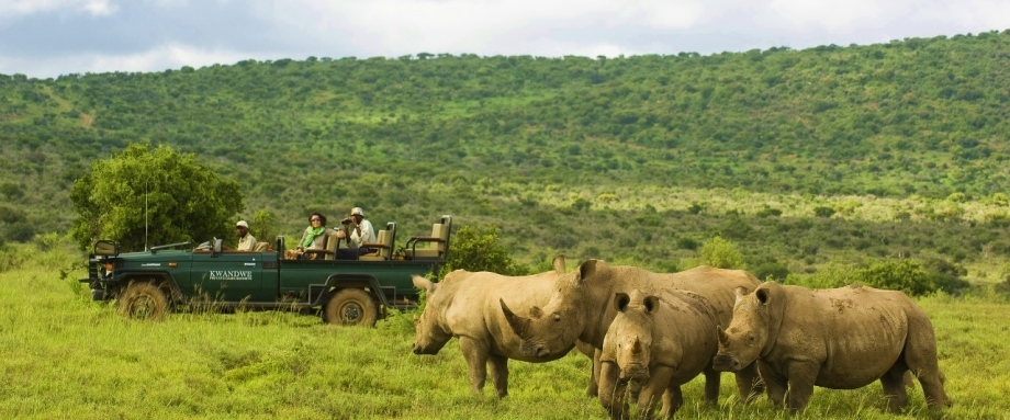 Safari in the Eastern Cape