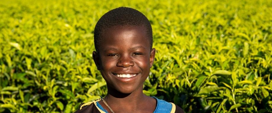 Safari in rural Malawi