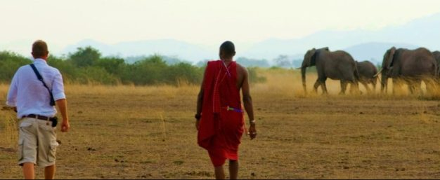 Tortilis Camp - Bush Walk - Elephants