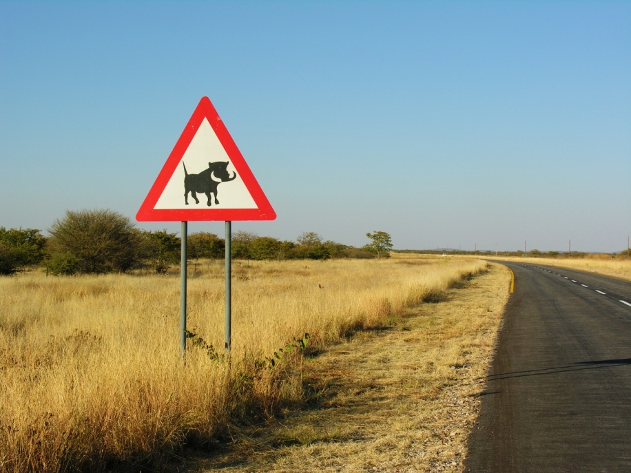Road trip in Namibia