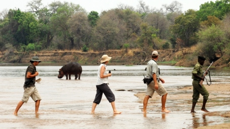 Walking safari in the North Luangwa