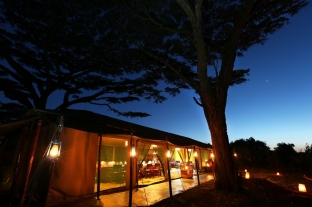 Safari from Lemala Ngorongoro