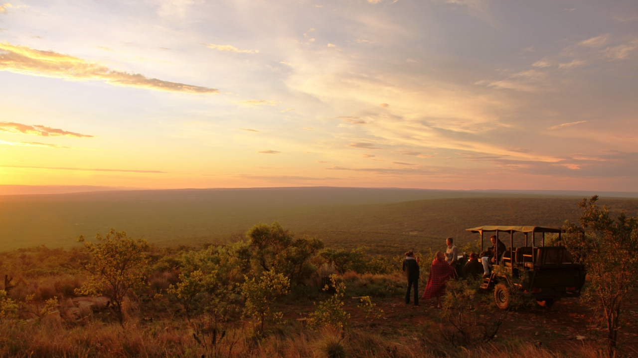 Safari in the Waterberg