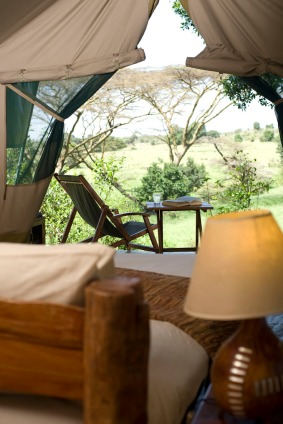 Looking out at Kicheche Mara Camp