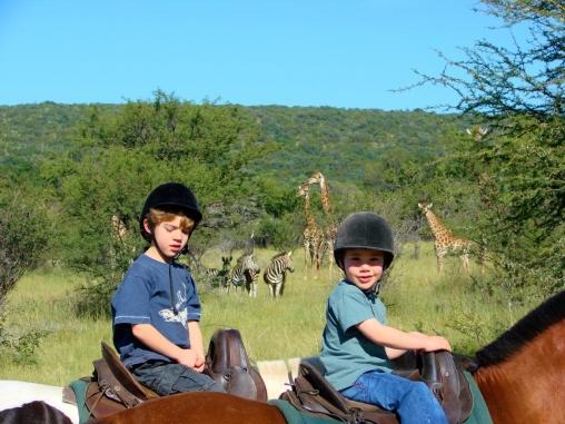 Riding Safari at Ants