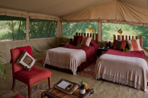 Twin tent at Kicheche Laikipia