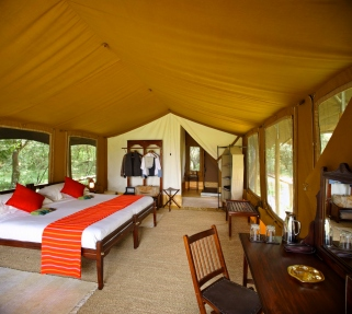 Tent at at Elephant Pepper Camp