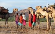 Karisia Walking safari in Lakipia