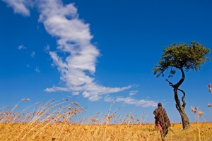 Ol Seki Safari Guide