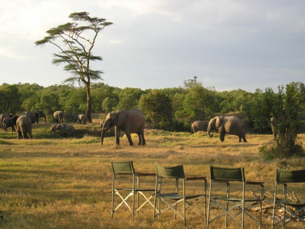 Sundowners at Ol Pejeta Bush Camp