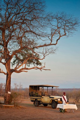 Game Drive at Azura Selous