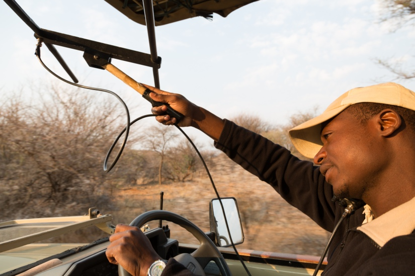 Self drive safari in Namibia