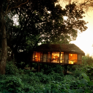 Treehouse at Lake Manyara Tree Lodge