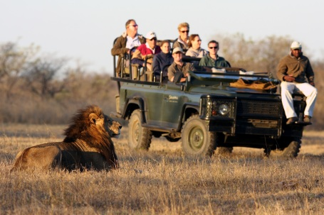 Sabi Sands Safari