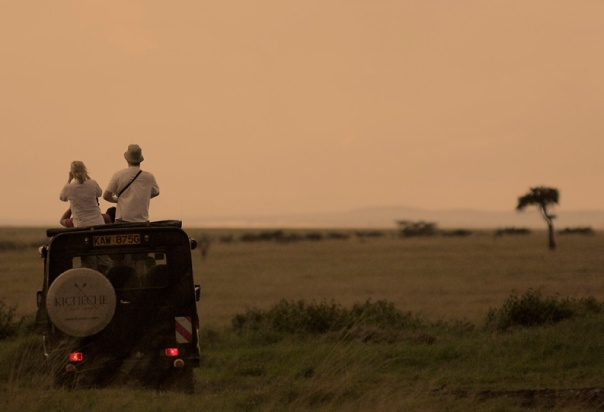 Game drive from Kicheche Bush Camp
