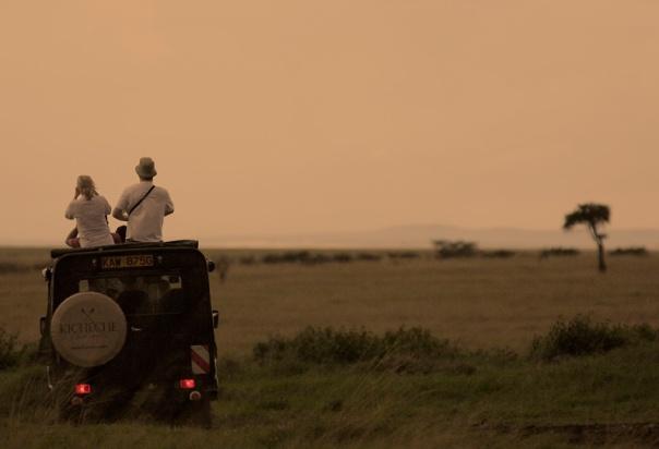 Game drive from Kicheche Bush Camp