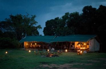 On safari at Offbeat Mara