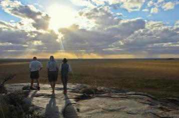 Safari at Namiri Plains