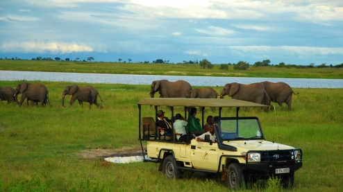 Chobe Chilwero Game Drive