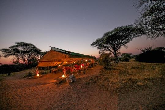 Mdonya Old River Camp