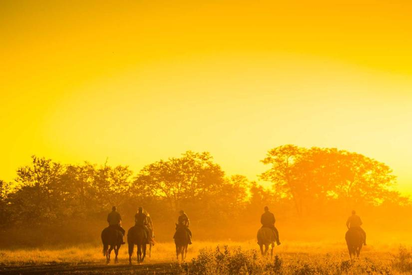Motswiri Riding Safari