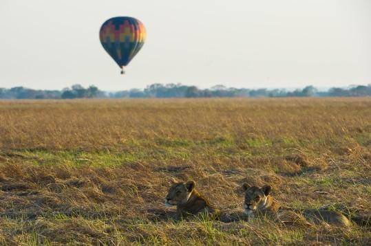 Shumba Hot Air Balloon