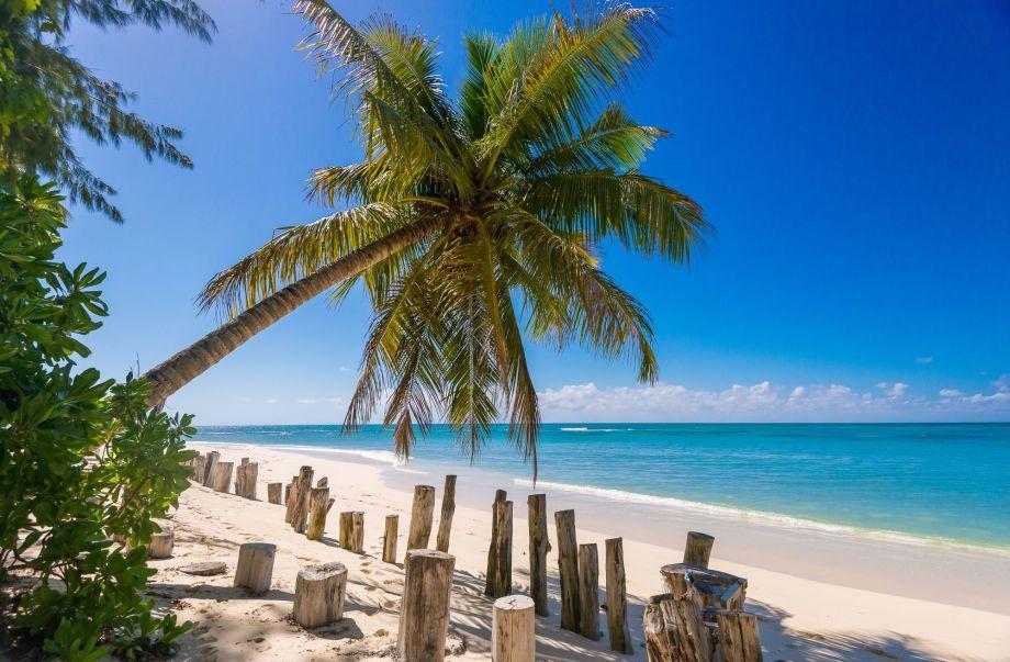 (c) Denis Island