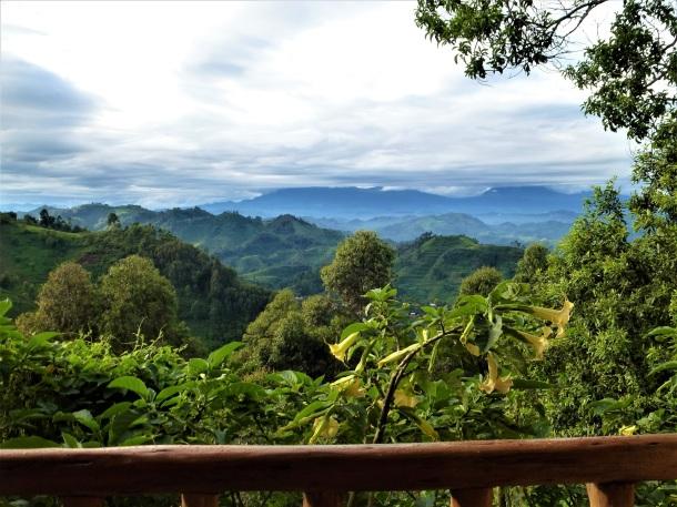 Nkuringo Gorilla Lodge View