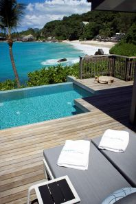 Chalet Plunge Pool