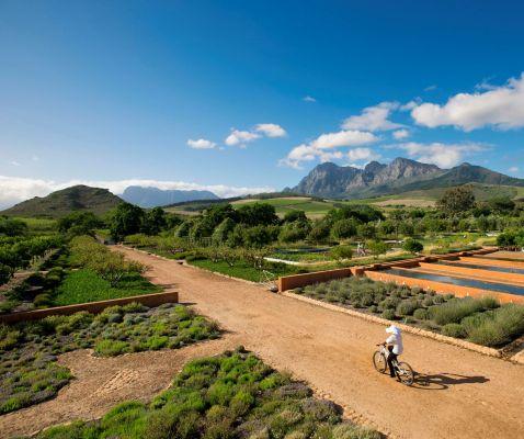 Cycling through the kitchen garden