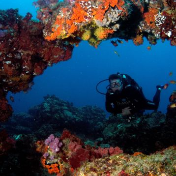 Diving at Thonga