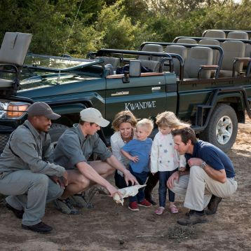 Family Safari at Kwandwe