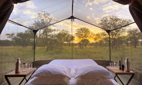 The bed placed in star gazing tent