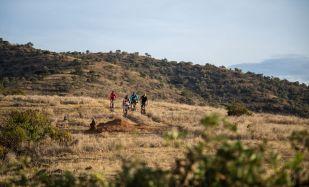 Mountain bike safaris
